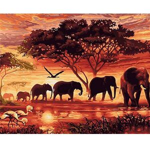 DIY Digital Canvas Painting Gift for Adults Kids Paint by Number Kits Home Decorations